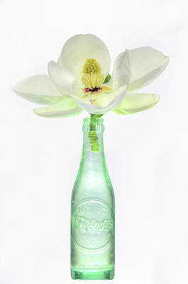 Digital Art - Pepper And Magnolia Still Life by JC Findley