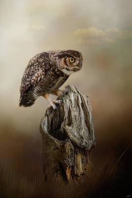 Photograph - Perching In Anticipation by Jai Johnson