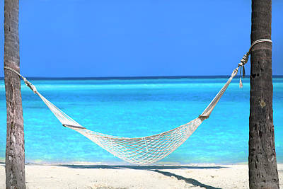 Photograph - Perfect Hammock by Sean Davey