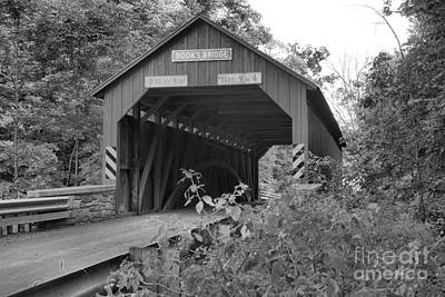 Photograph - Perry County Books Covered Ridge Black And White by Adam Jewell