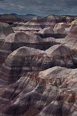Petrified Forest, Arizona II Original