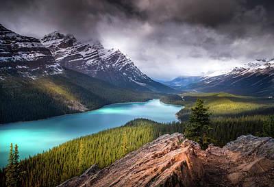 Photograph - Peyto Lake / Alberta, Canada by Nicholas Parker