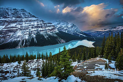 Photograph - Peyto Lake Winter by Inge Johnsson