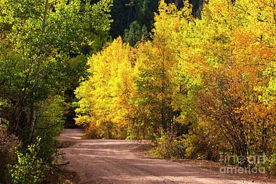 Photograph - Phantom Canyon Colorado In Autumn by Steve Krull