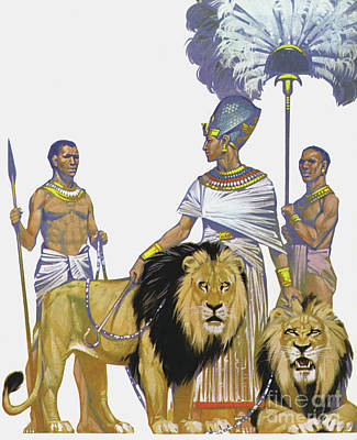 Painting - Pharaoh Rameses II Of Egypt And His Lions by Angus McBride