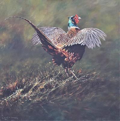 Painting - Pheasant Displaying by Alan M Hunt
