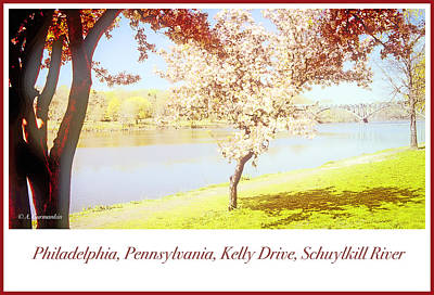 Photograph - Philadelphia, Pennsylvania, East River Drive, Schuylkill River,  by A Gurmankin
