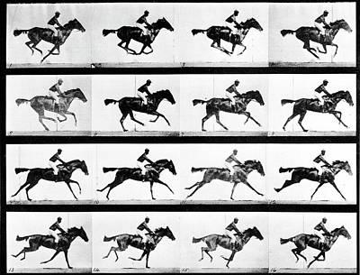 Photograph - Photographer Eadweard Muybridges Study by Eadweard Muybridge