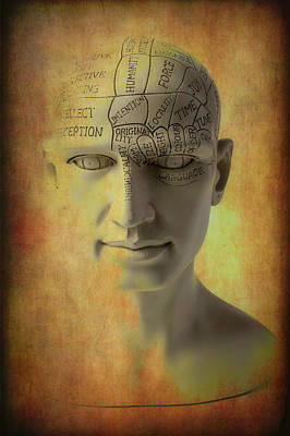 Photograph - Phrenology Head Abstract by Garry Gay