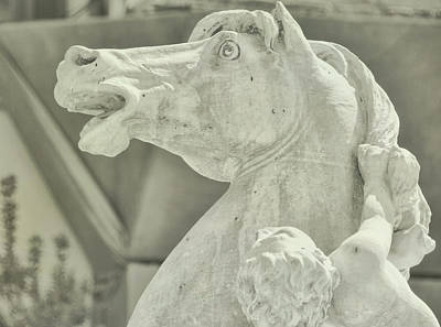 Photograph - Piazza Equine by JAMART Photography