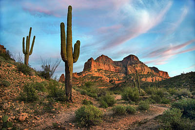 Photograph - Picketpost Mountain With Saguaro Cactus by Dave Dilli