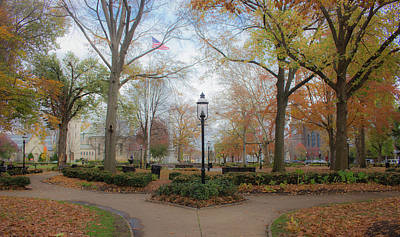 Photograph - Picture Perfect Park In The Fall by Traci Asaurus