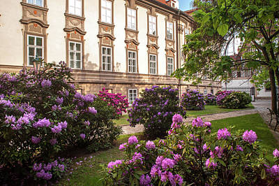 Photograph - Picturesque Kolowrat Garden With Blooming Rhododendron 3 by Jenny Rainbow