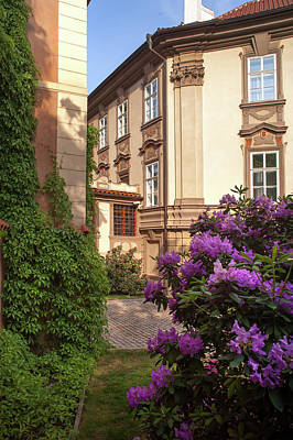 Photograph - Picturesque Kolowrat Garden With Blooming Rhododendron 4 by Jenny Rainbow