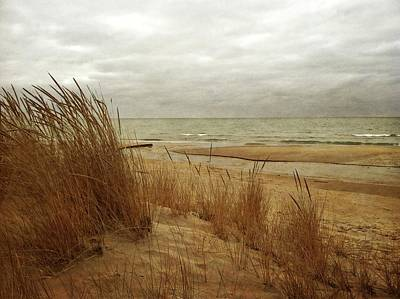 Photograph - Pier Cove Beach With Autumn Grasses by Michelle Calkins