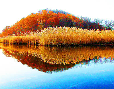 Photograph - Piermont Autumn Backwater by Roger Bester