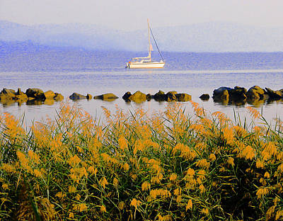 Photograph - Piermont Reeds And Boat by Roger Bester