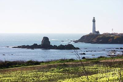 Photograph - Pigeon Point Lighthouse With Wildflowers by Carol Groenen