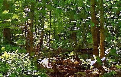 Pigeon Swamp Connecticut Original
