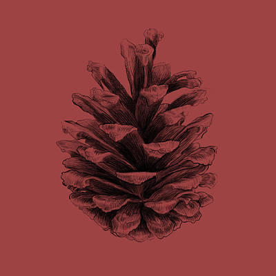 Pine Cones Wall Art - Drawing - Pine by Eric Fan