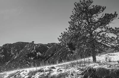 Photograph - Pine Mountain by Dan Urban