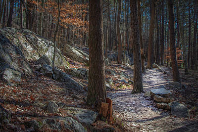 Photograph - Pine Mountain Trail by Keith Smith