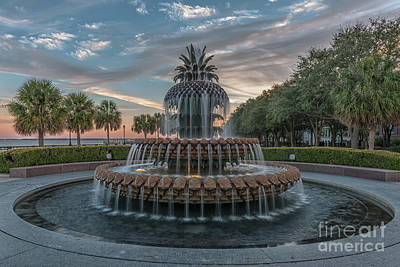 Photograph - Pineapple Suprise - Charleston South Carolina by Dale Powell