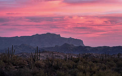 Photograph - Pink And Purple Skies At Sunset  by Saija Lehtonen