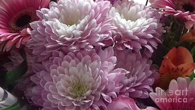 Photograph - Pink And White Chrysanthemums by Joan-Violet Stretch