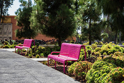 Wall Art - Photograph - Pink Chairs At Grand Park by Roslyn Wilkins