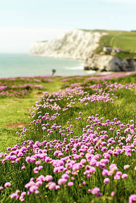 Scenic Photograph - Pink Coastal Path by S0ulsurfing - Jason Swain