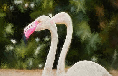 Comedian Drawings - Pink Flamingo Pair by Andrea Anderegg