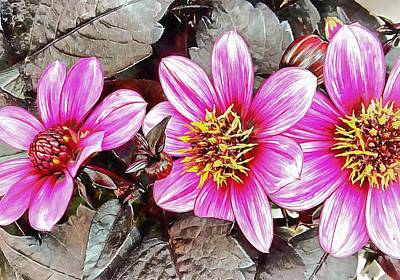 Photograph - Pink Floral Glory by Dorothy Berry-Lound