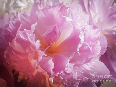 Photograph - Pink Flowers No. 77 by Monica C Stovall