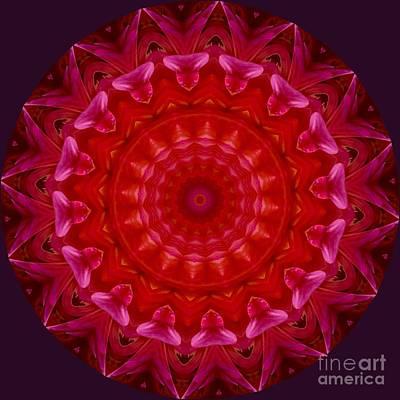 Photograph - Pink Lace Mandala by Susan Rydberg
