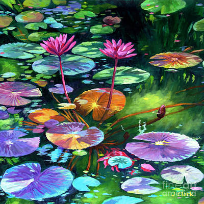 Lilies Royalty-Free and Rights-Managed Images - Pink Water Lilies Square by John Clark