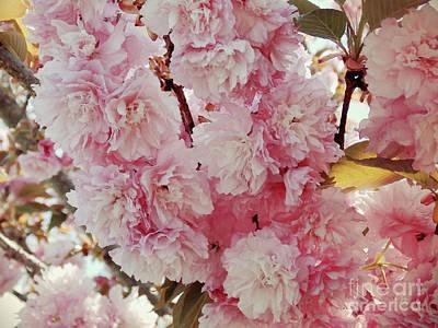 Angels And Cherubs - Pink x Gazillion  by Anita Faye