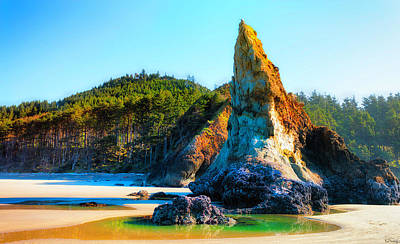 Photograph - Pinnacle's Tide Pool On Oregon Coast by Dee Browning