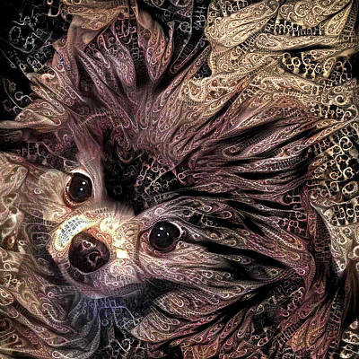 Digital Art - Piper The Pomeranian by Peggy Collins
