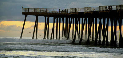 Photograph - Pismo Beach Pier Seagull by Floyd Snyder