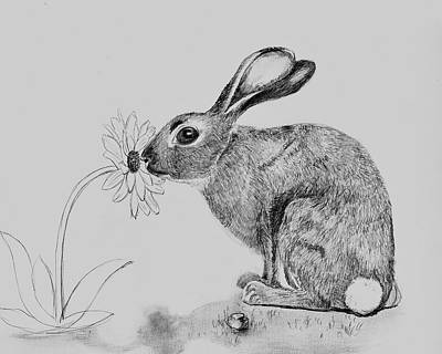 Animals Drawings - Pit Stop by Antje Martens-Oberwelland