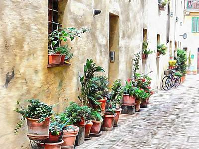 Photograph - Plant Pots And Bicycles Pienza by Dorothy Berry-Lound