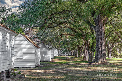 Photograph - Plantation Cabins - Mcleod Plantation by Dale Powell
