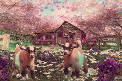 Photograph - Playing In The Garden In Soft Colors by Debra and Dave Vanderlaan