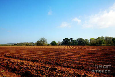 Photograph - Ploughed Fields by Terri Waters
