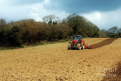Photograph - Ploughing Time by Terri Waters