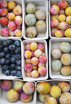 Photograph - Plum Punnets  by Tim Gainey