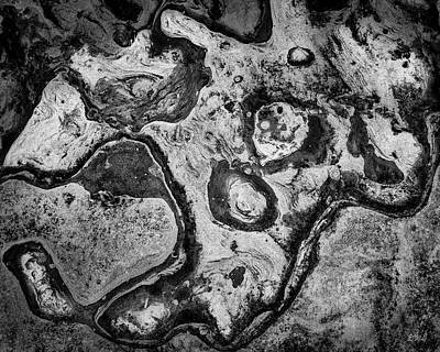Photograph - Point Lobos Xvi Bw by David Gordon
