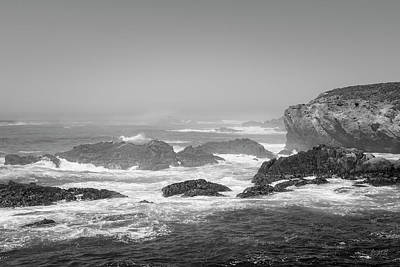Photograph - Point Lobos Xviii Bw by David Gordon