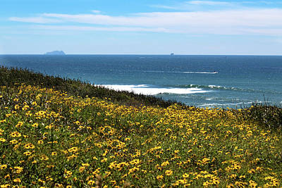 Photograph - Point Loma Views by Alison Frank